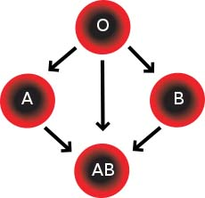 Blood groups and mentalities