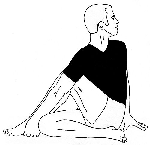 Ardha Matsyendrasana Benefits And Precautions Yoga