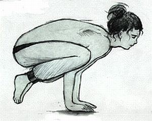 Kakasana (crow pose in yoga)