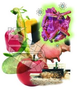 Adulterated food and medicines